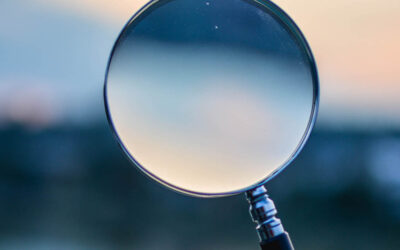 Why You Should Carry Out Reverse Due Diligence